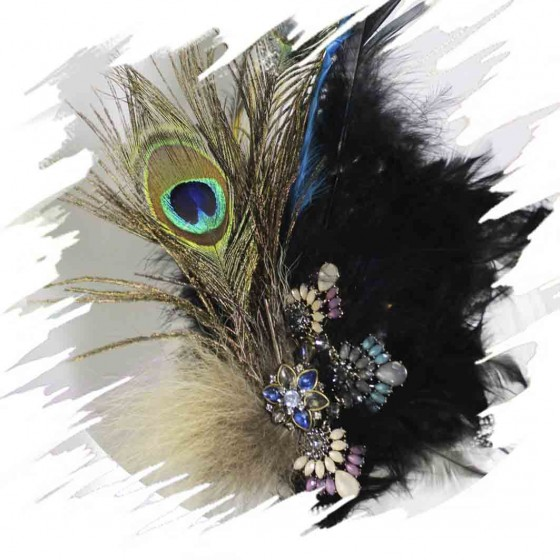 Blue Peacock Feather...