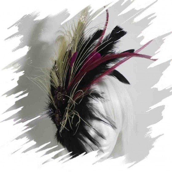 Pink Peacock Feather...
