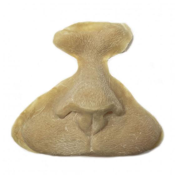 Feline nose, Latex application.