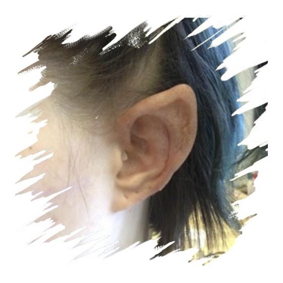 Elf Ears, Latex Application